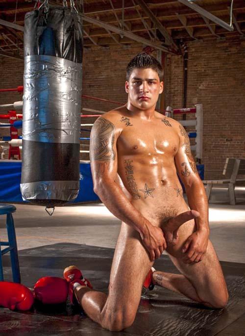 Boy sarado UFC pelado pau duro