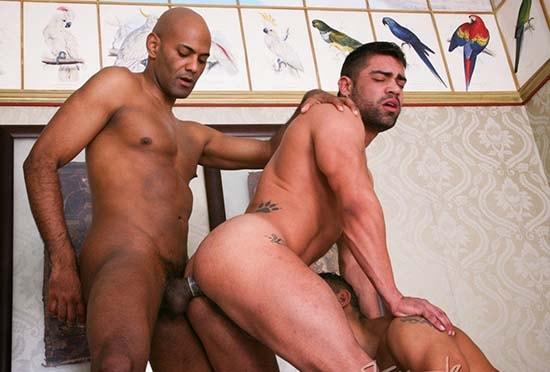 Homens sarados transando wagner-vittoria-trio