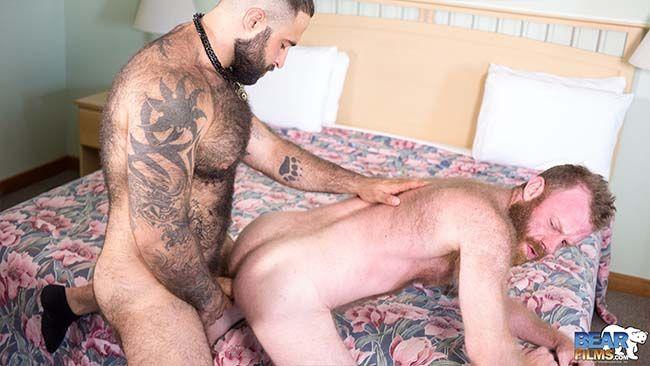botando no cu do urso gay ruivo