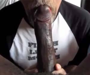 papai divorciado penis negro monstruoso